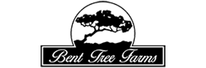 Bent Tree Farms | South Poll Grass Fed Cattle